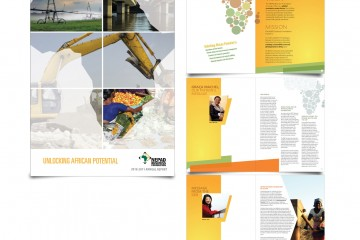 Nepad-Business-Foundation
